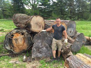 Slabs, Wood