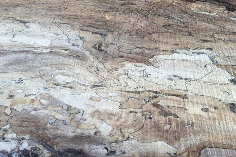 Spalted Maple Slabs