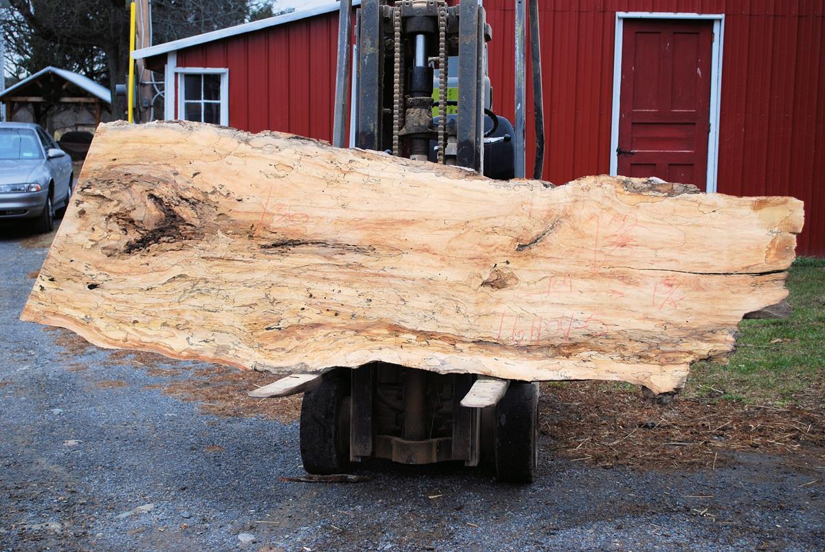 wood slab live edge board wide plank wavy edge board ForMaple Wood Slab