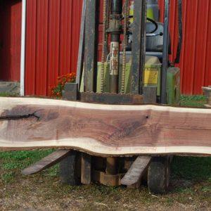 Black Walnut Wood Slabs For Sale