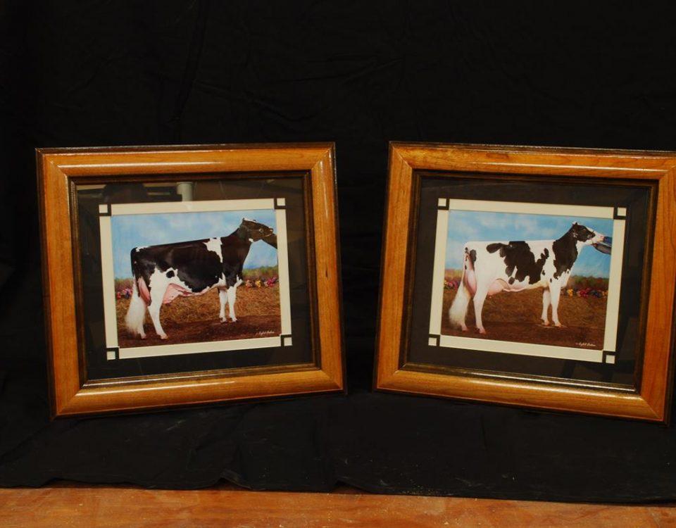 Frames Archives - LaRue Woodworking