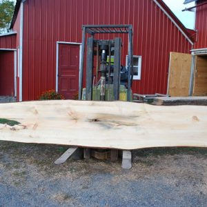 Pine Wood Slabs For Sale