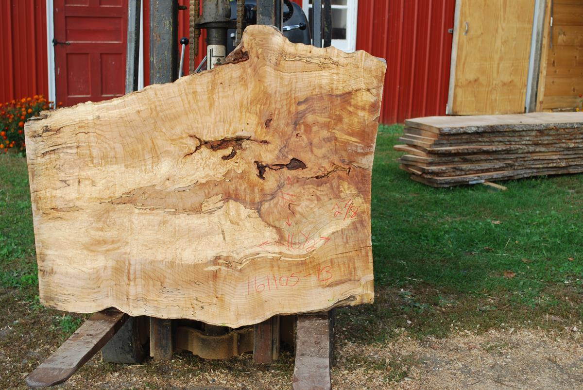Spalted Maple Wood ~ Wood slab live edge board wide plank wavy